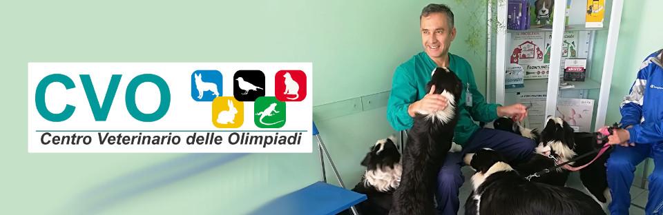 centro-veterinario-avezzano-aseleti-cani.jpg