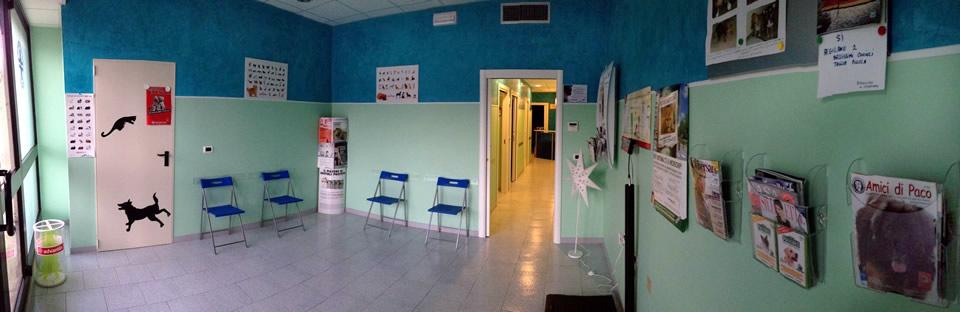 sala-attesa-veterinario-aseleti.jpg